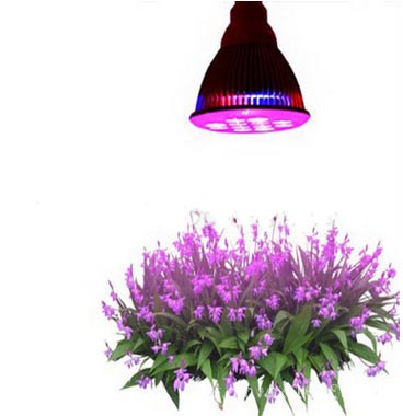 Plant led lights Grow Lights - PAR38 Grow Lights
