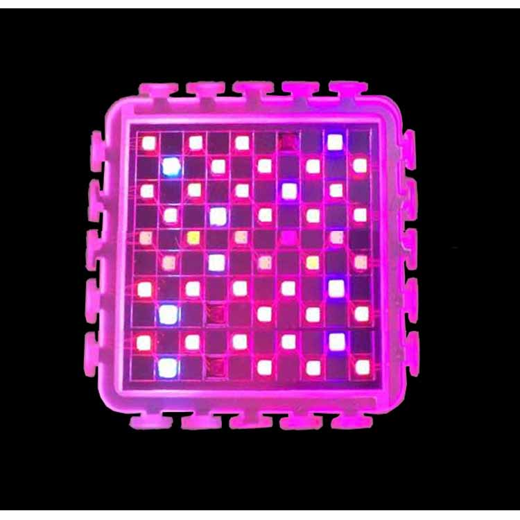 LED Grow Lights and Plant Lights for Indoor plants